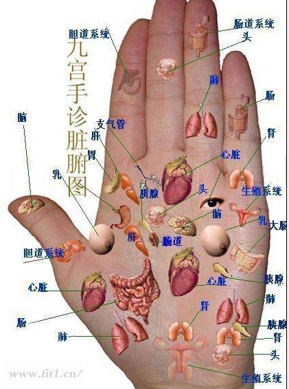 手部穴位诊断图